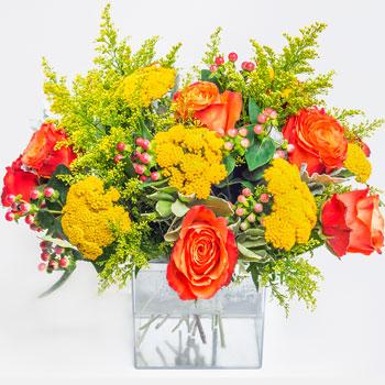 garden mix arranged in flower crazy cube