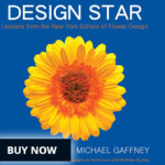 design star book buy now