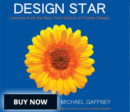 Design Star, the book. Click to purchase