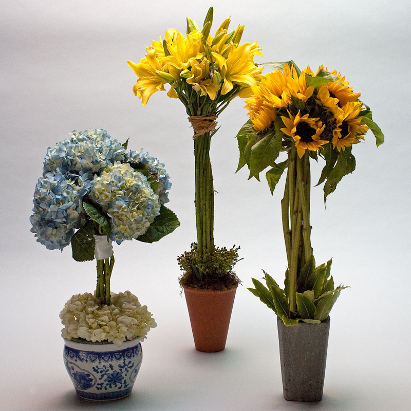 Flower Arrangements Courses: Flower Design Sample Photos Learned At The Schools Of