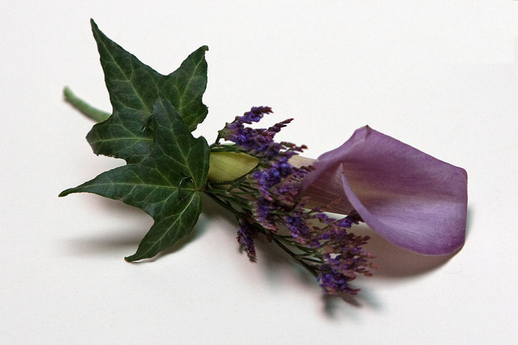 purple-01