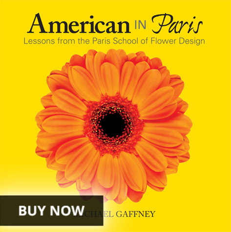 American in Paris book buy now